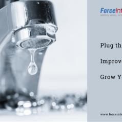 Plug the Leaks Improve Profitability Grow Your Business